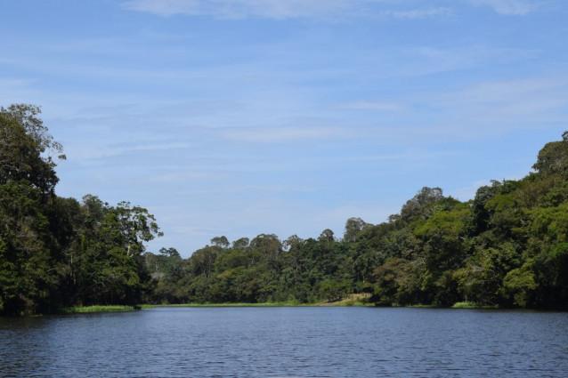 Turismo Aventura 3 dias na Selva